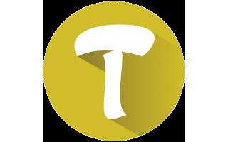 traco-saudi